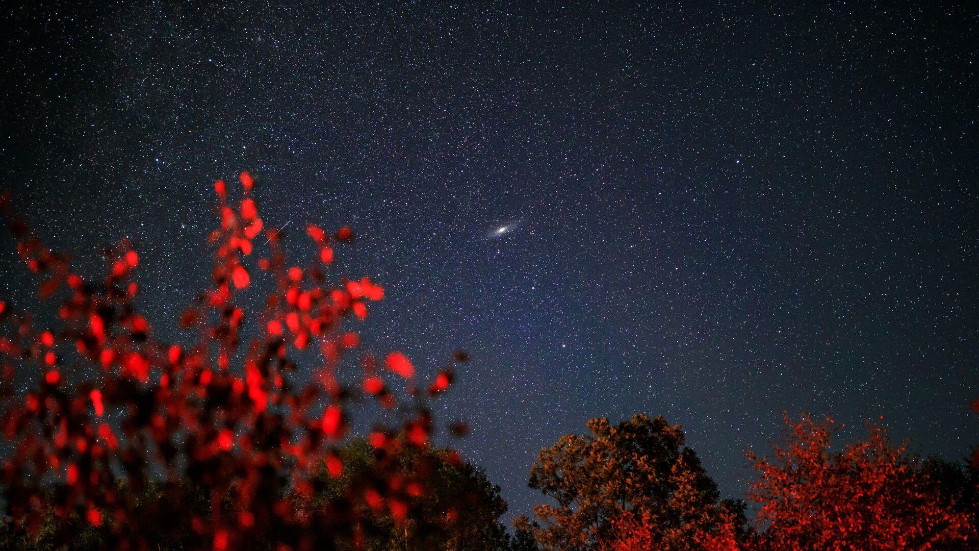 Звездное небо, наблюдаемое в Краснодарском крае во время метеорного потока Персеиды - Sputnik Грузия, 1920, 28.09.2021