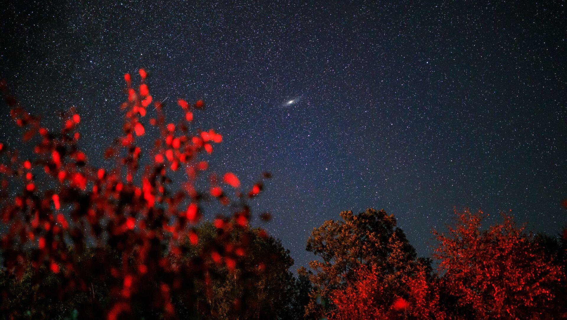 Звездное небо, наблюдаемое в Краснодарском крае во время метеорного потока Персеиды - Sputnik Грузия, 1920, 10.08.2021