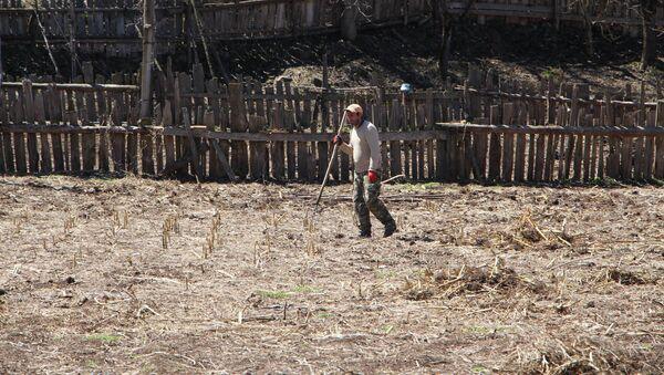 Район Хуло, высокогорная Аджария. Обработка фермерами земель сельскохозяйственного назначения  - Sputnik Грузия