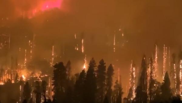 Пожары в Калифорнии: больше 200 человек эвакуировали из палаточного лагеря - Sputnik Грузия