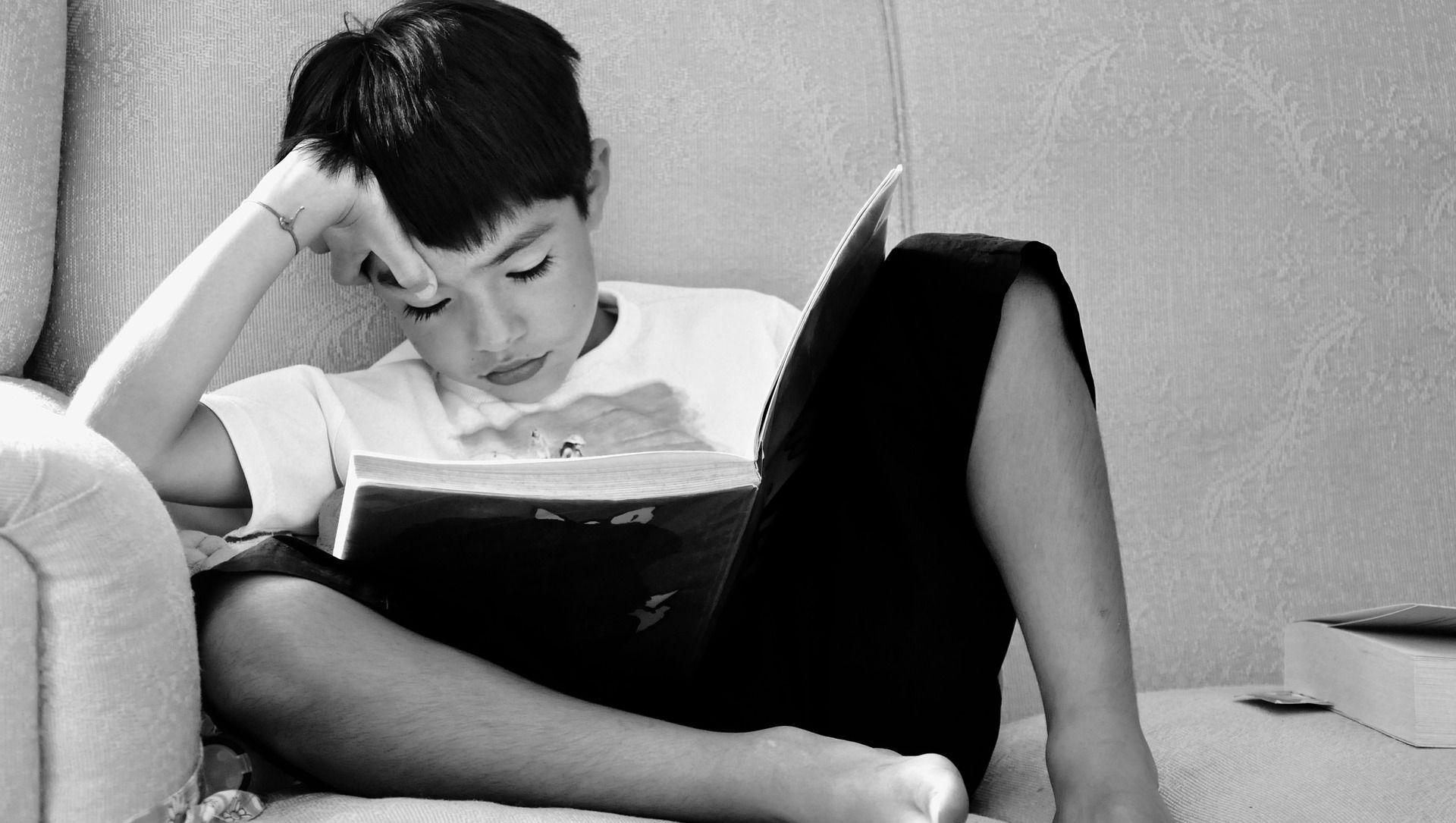 ბიჭი კითხულობს წიგნს  - Sputnik საქართველო, 1920, 19.02.2021