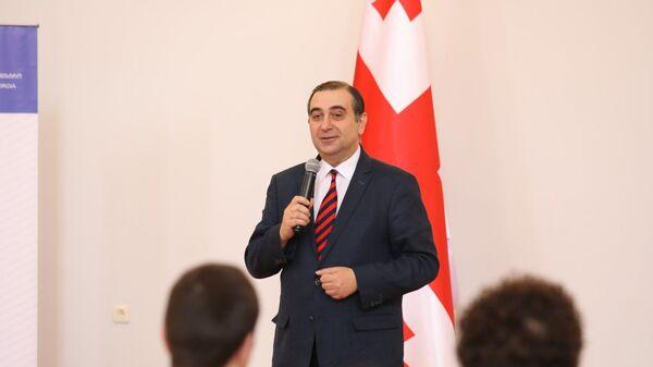 Министр образования, науки, культуры и спорта Михаил Чхенкели  - Sputnik Грузия