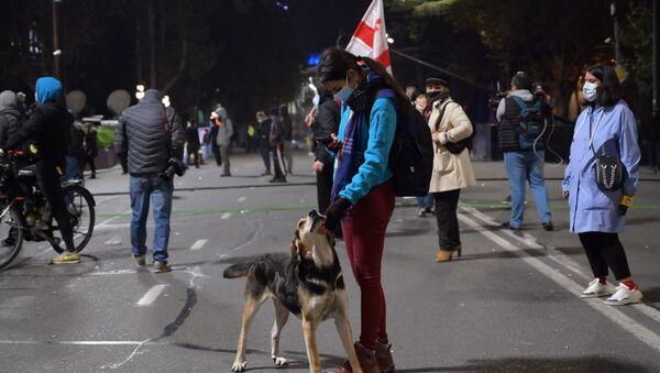 Акция протеста оппозиции у здания парламента Грузии 9 ноября 2020 года - Sputnik Грузия