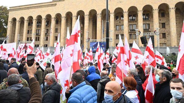Акция оппозиции 14 ноября 2020 года - активисты у парламента Грузии с флагами - Sputnik Грузия