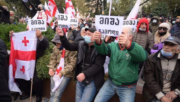 Акция протеста оппозиции 14 ноября 2020 года - протестующие держат плакаты Миша, приезжай! - Sputnik Грузия