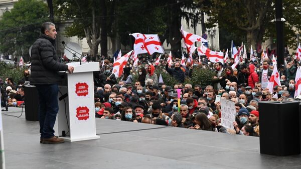 Акция протеста оппозиции 14 ноября 2020 года - выступает Давид Бакрадзе - Sputnik Грузия