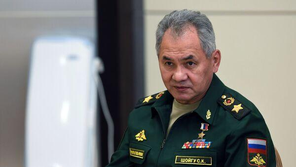Министр обороны РФ Сергей Шойгу - Sputnik Грузия