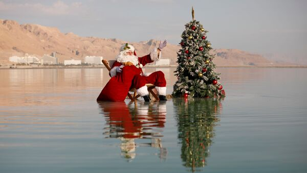Санта-Клаус возле рождественской елки на Мертвом море - Sputnik Грузия