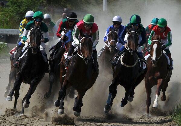 Участники 1-го заезда на Гудермесском ипподроме. Ипподром в Гудермесе открыл скаковой сезон-2019 в Чеченской Республике скачками лошадей чистокровной верховой породы - Sputnik Грузия