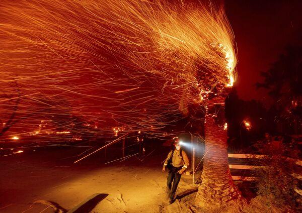 Из-за сильного ветра пламя распространилось через каньоны Южной Калифорнии  - Sputnik Грузия