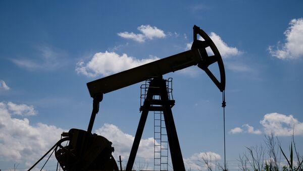 Нефтяной станок-качалка в Северском районе Краснодарского края. - Sputnik Грузия