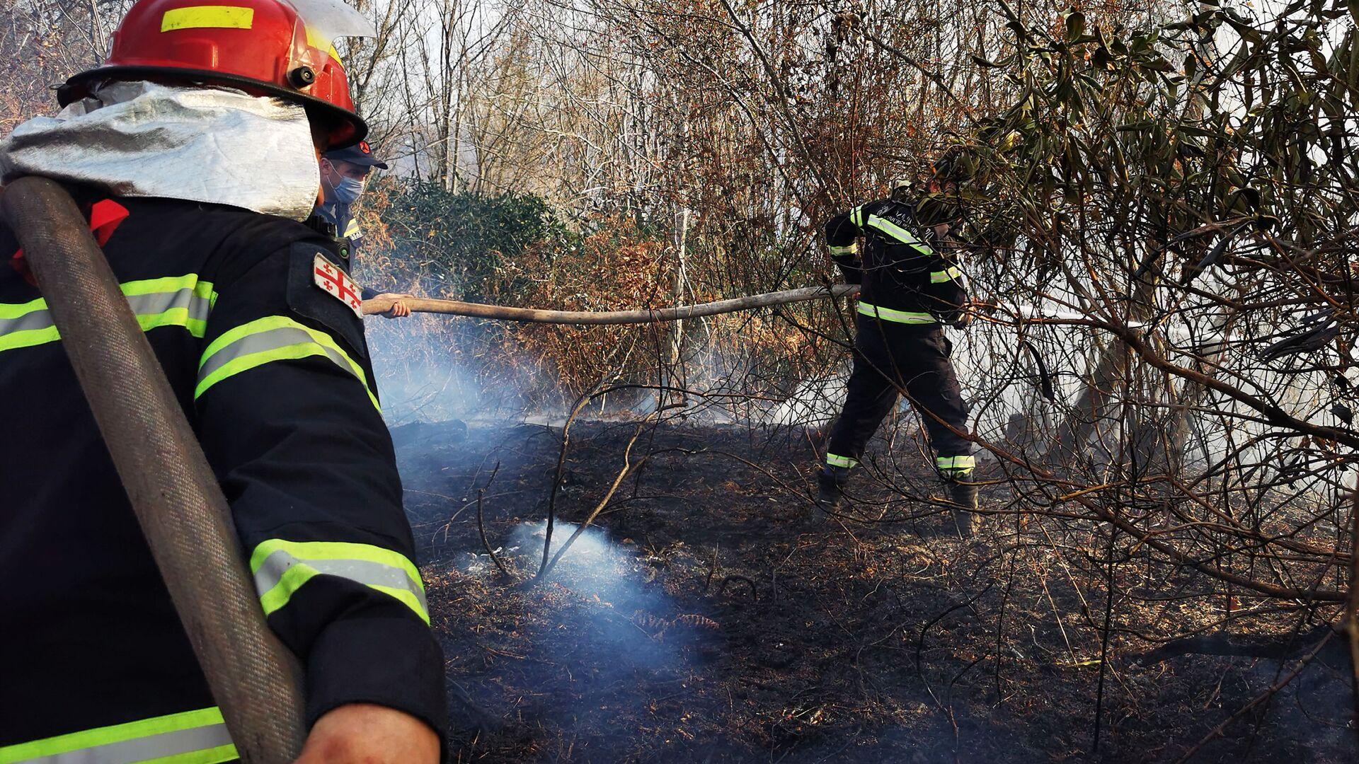 Лесные пожары в Западной Грузии. Пожарные спасатели на тушении пожара - Sputnik Грузия, 1920, 04.09.2021