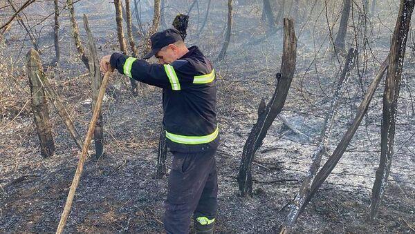 Лесные пожары в Самегрело - пожарные-спасатели на месте бедствия - Sputnik Грузия