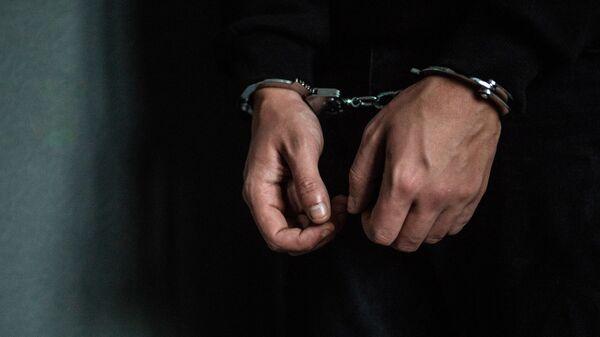 Задержание преступника - Sputnik Грузия