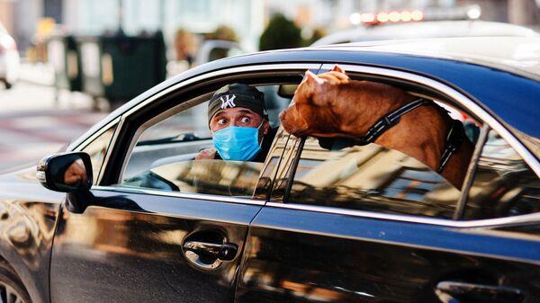 Эпидемия коронавируса - мужчина в маске с собакой в машине - Sputnik Грузия