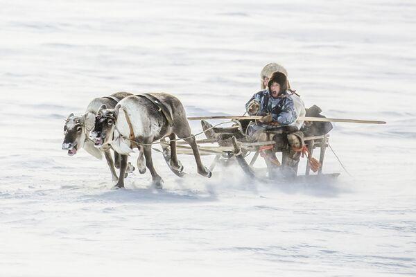 Снимок из портфолио российского фотографа Владимира Алексеева, победившего в конкурсе Travel Photographer of the Year 2020 - Sputnik Грузия