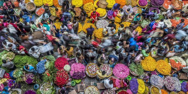 Британский фотограф Питер Уолмси (Peter Walmsley) прислал кадр, сделанный на рынке в Бангалоре. Снимок принес ему победу в номинации Цвета жизни - Sputnik Грузия
