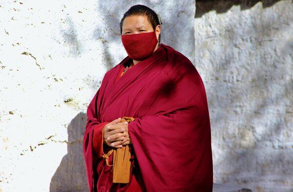 Что же защищает тибетцев от смертельной инфекции до сих пор остается загадкой - Sputnik Грузия