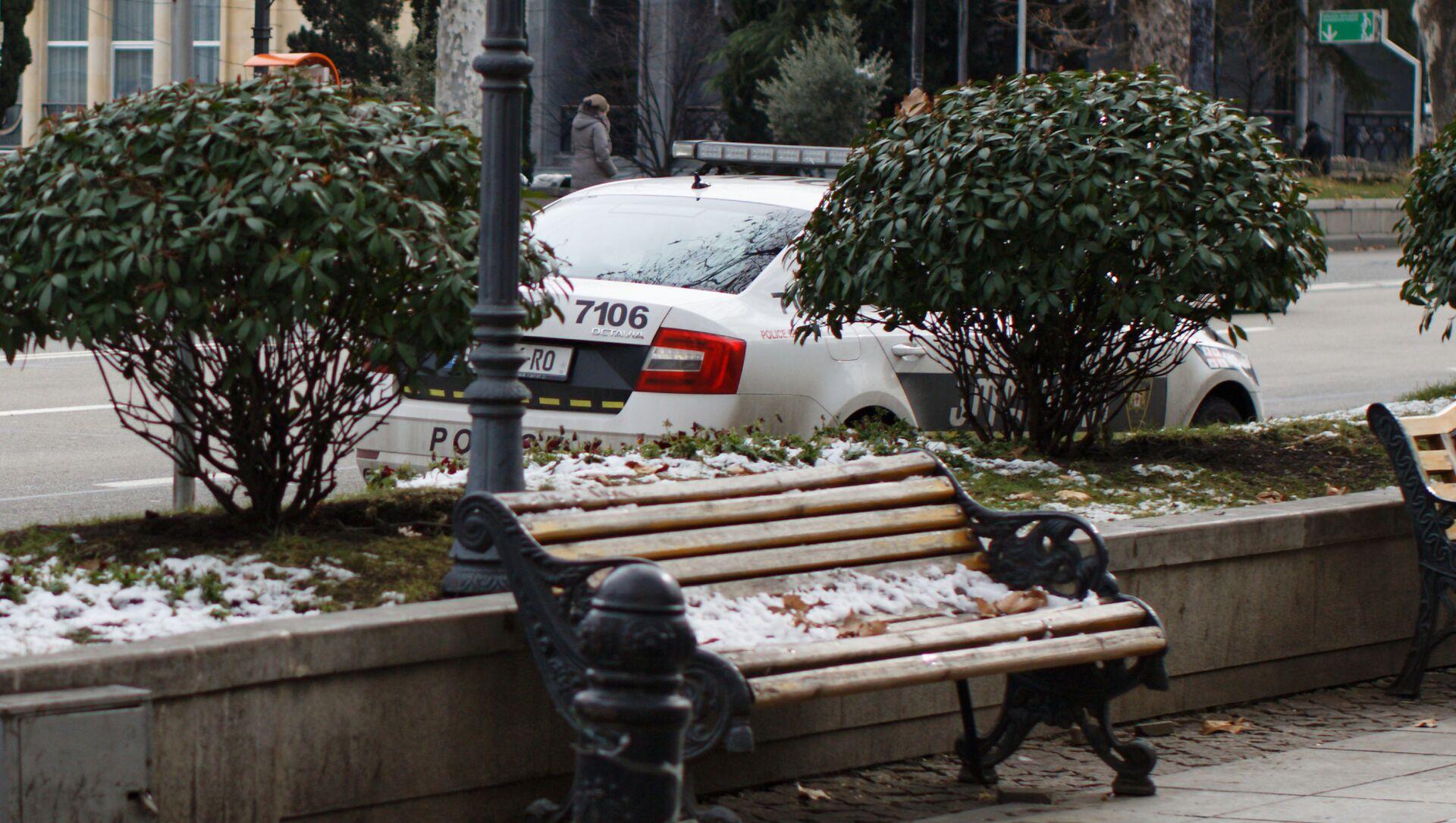 Патрульная полиция штрафует нарушителей - Sputnik Грузия, 1920, 18.02.2021