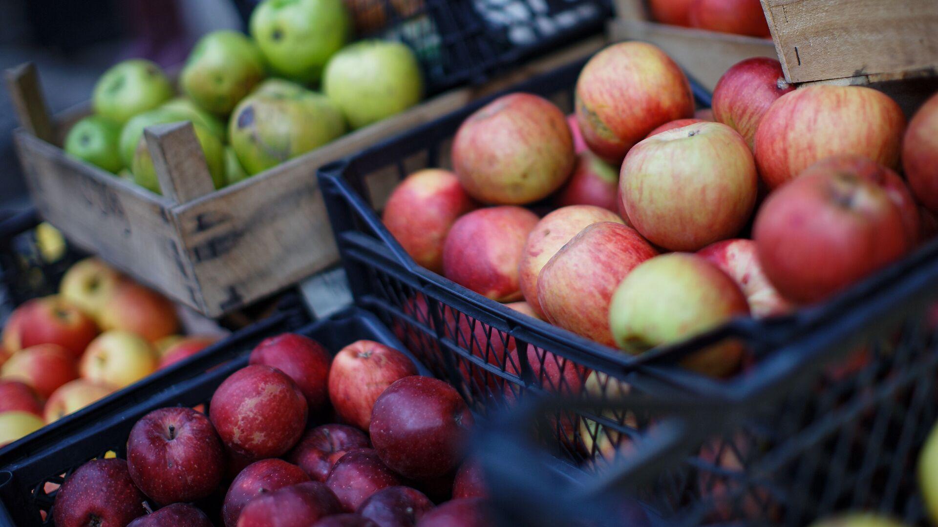 Грузинские яблоки в ящиках - уличная торговля - Sputnik Грузия, 1920, 23.09.2021