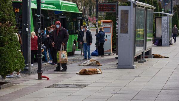 Эпидемия коронавируса - прохожие на автобусной остановке в масках - Sputnik Грузия