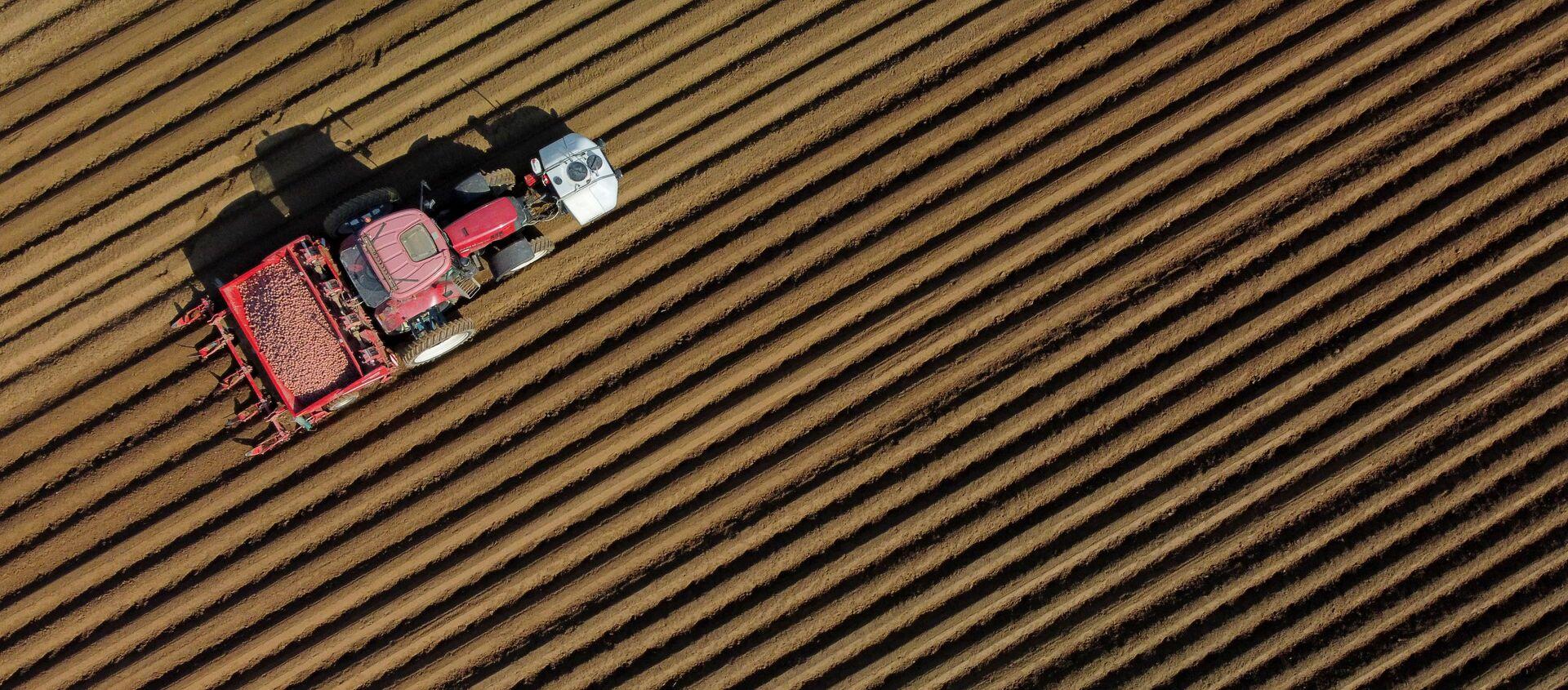 Сельскохозяйственный кризис во Франции. Обработка полей с помощью сельхозтехники - Sputnik Грузия, 1920, 17.04.2021