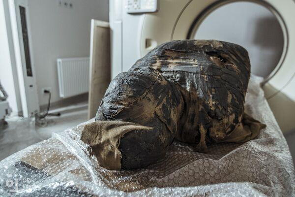 Судя по размеру черепа плода, женщина умерла на 26–30 неделе беременности. Самой же несостоявшейся матери, если судить по состоянию её зубов, было 20–30 лет   - Sputnik Грузия