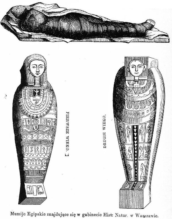 Ученые планируют тщательно исследовать мумию. Не исключено, что это поможет узнать что-нибудь о том, как жители Древнего Египта пытались помочь женщине выносить ребёнка и справиться с осложнениями беременности   - Sputnik Грузия