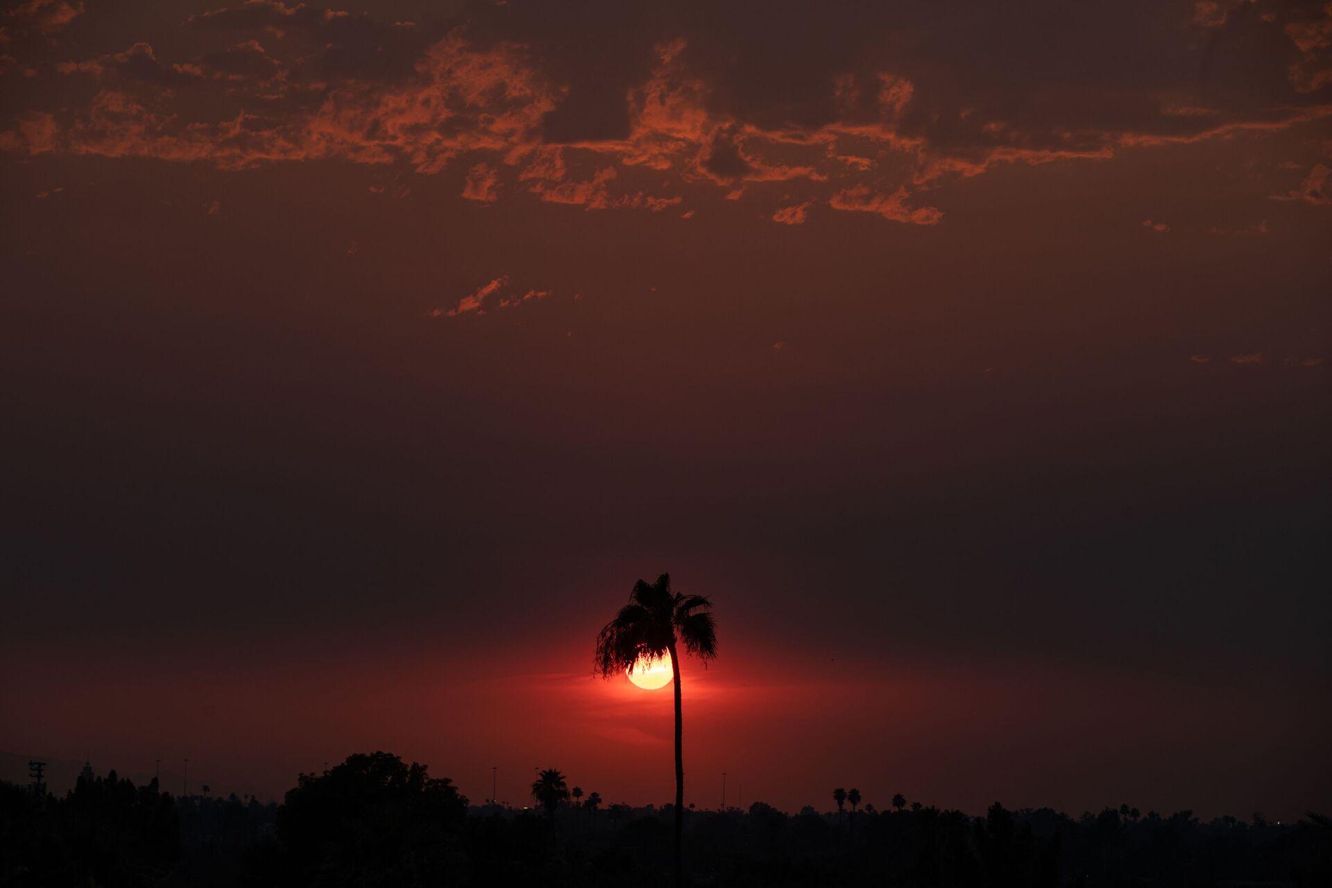 Закат в штате Аризона  - Sputnik Грузия, 1920, 30.09.2021