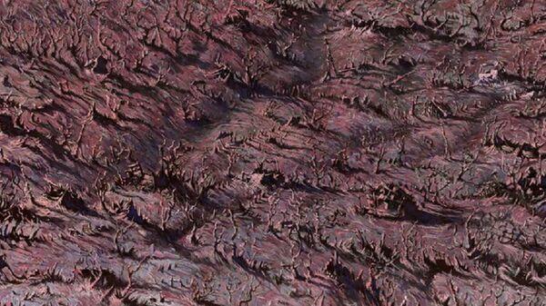 Кадр из анимационного фильма Заброшенная деревня - Sputnik Грузия