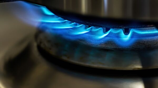 Газовая плита - Sputnik Грузия