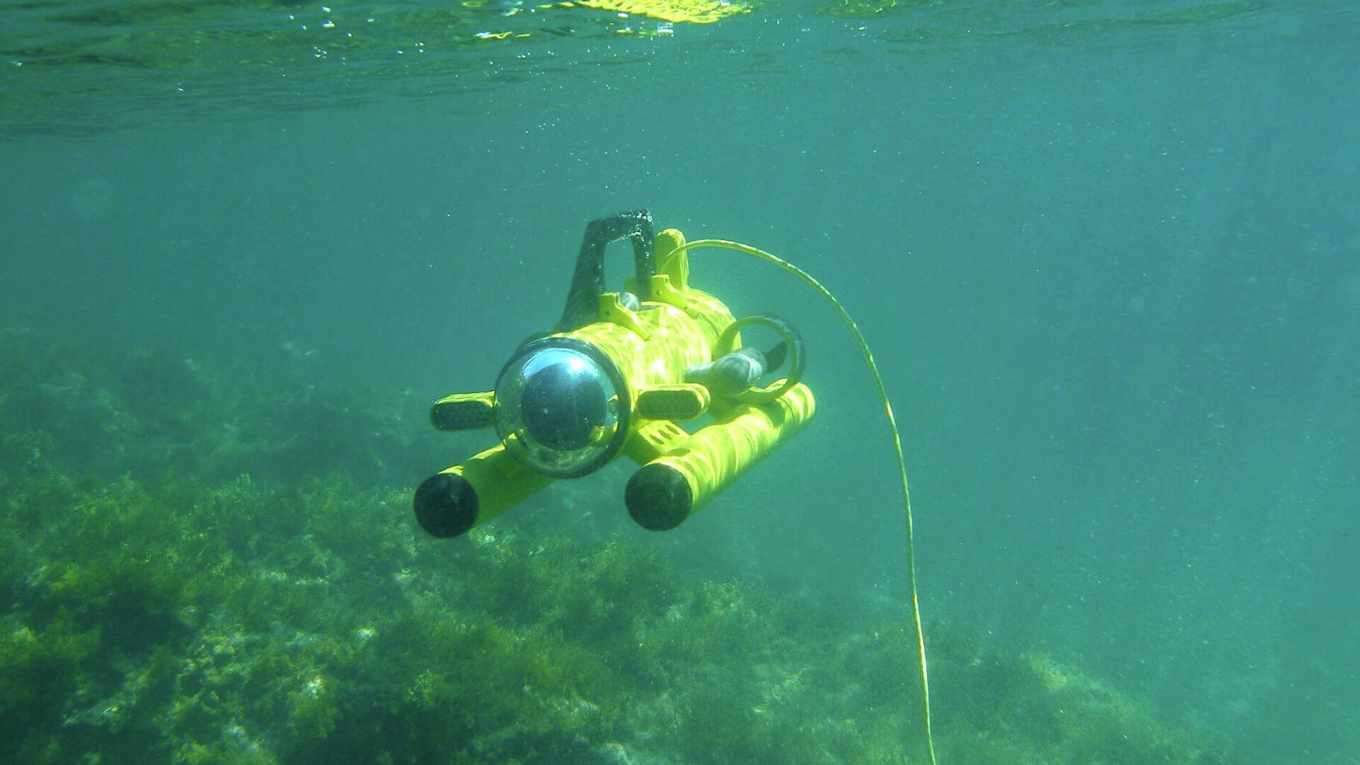 Роботы исследуют дно Черного моря у побережья Грузии - Sputnik Грузия, 1920, 02.09.2021