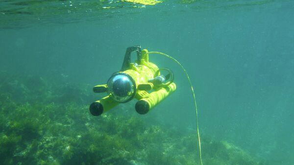 Роботы исследуют дно Черного моря у побережья Грузии - Sputnik Грузия