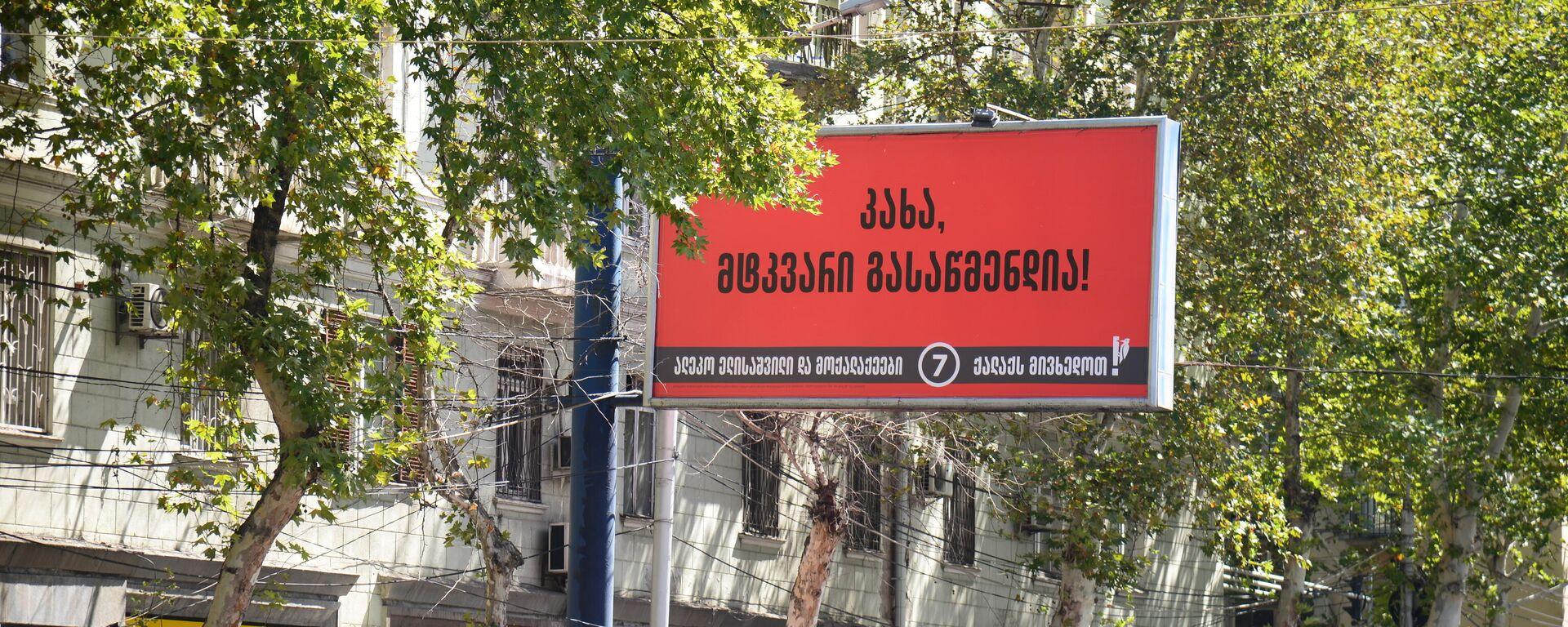 Предвыборная реклама - баннер партии Граждане и Алеко Элисашвили - Sputnik Грузия, 1920, 21.09.2021