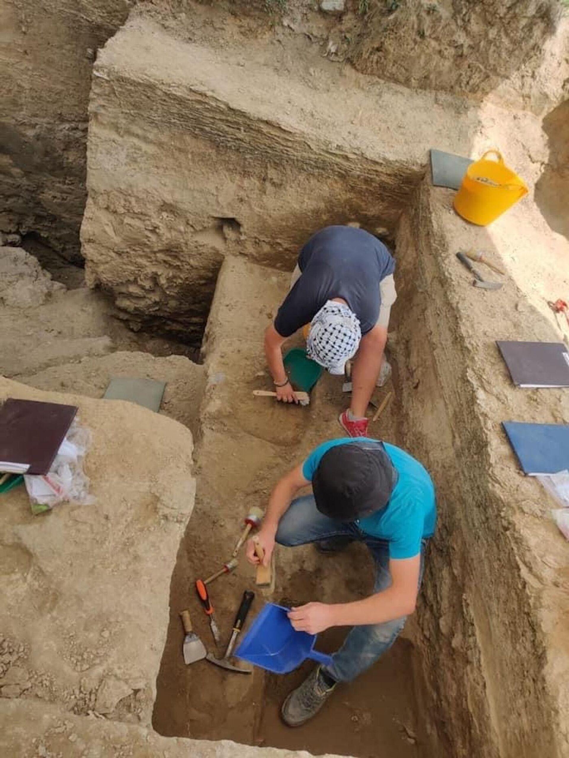Археологи обнаружили новый очаг гоминидов в Дманиси - Sputnik Грузия, 1920, 09.09.2021