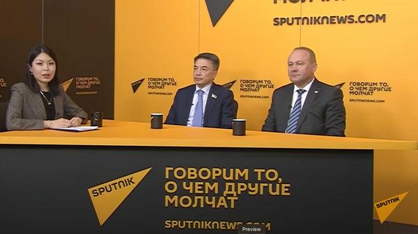 Международные наблюдатели о том, как проходят выборы в Госдуму РФ - Sputnik Грузия