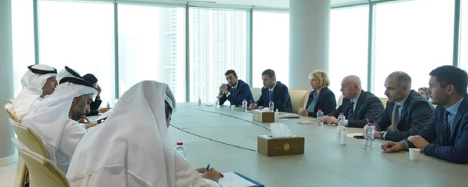 ნათია თურნავა შეხვედრაზე არაბთა გაერთიანებული საამიროების ეკონომიკის სამინისტროში - Sputnik საქართველო, 1920, 21.09.2021