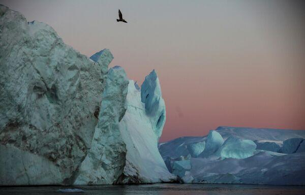 В каждый отдельный момент времени айсберги выглядят по-разному, изменяясь на солнце в течение дня - Sputnik Грузия