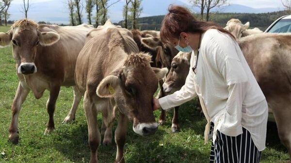 Новое сельскохозяйственное училище открылось в Дманиси - Sputnik Грузия