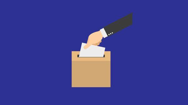 Выборы и пандемия: как пройдет голосование в Грузии  - Sputnik Грузия