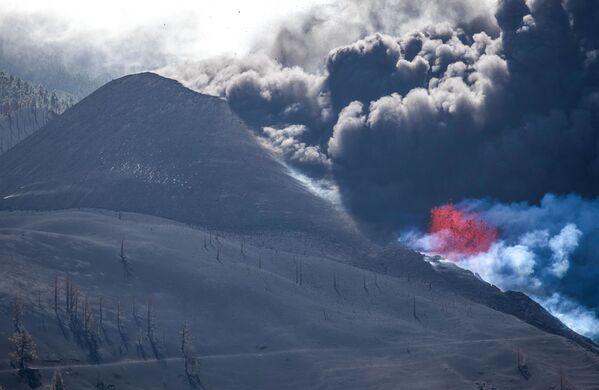 До извержения был зафиксирован рост сейсмической активности - Sputnik Грузия