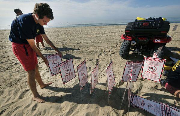 Спасатели на пляжах выставляют предупреждающие знаки - Sputnik Грузия