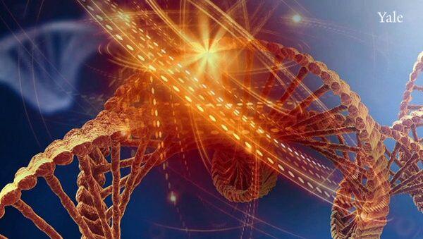 მხატვრის მიერ დანახული დნმ–ის მოლეკულა - Sputnik საქართველო