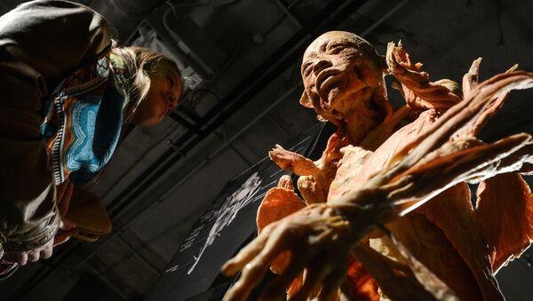 Выставка Тайны тела. Вселенная внутри в Москве - Sputnik Грузия
