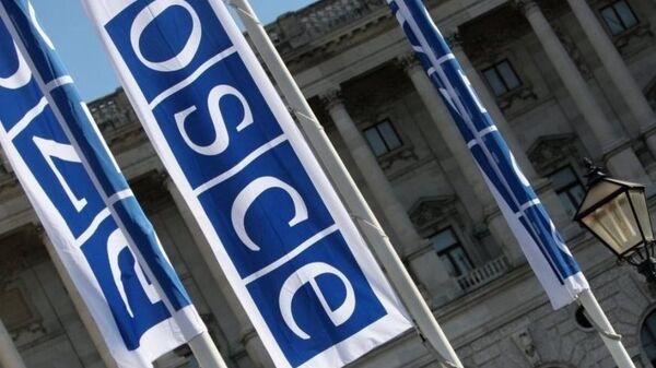 Флаги с логотипом ОБСЕ в Вене - Sputnik Грузия