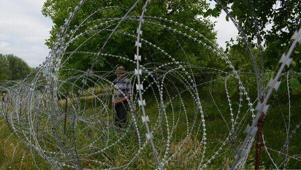 Колючая проволока, граница с Цхинвальским регионом - Sputnik Грузия
