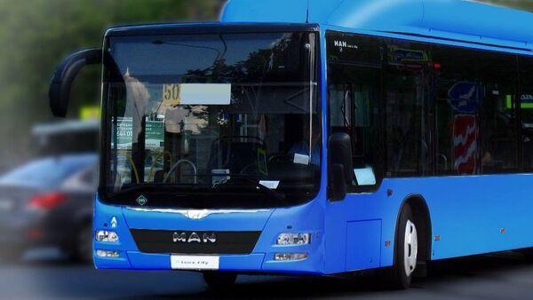 ახალი ავტობუსი - Sputnik საქართველო