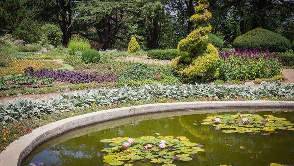 Ботанический сад в столице Грузии - Sputnik Грузия