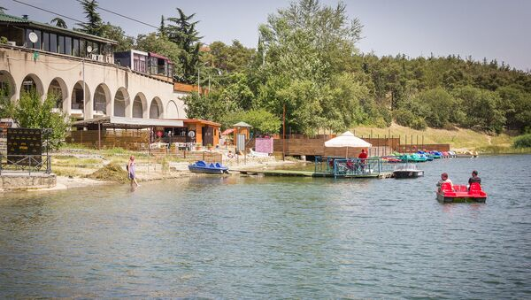 Отдых в летнюю жару - Черепашье озеро - Sputnik Грузия