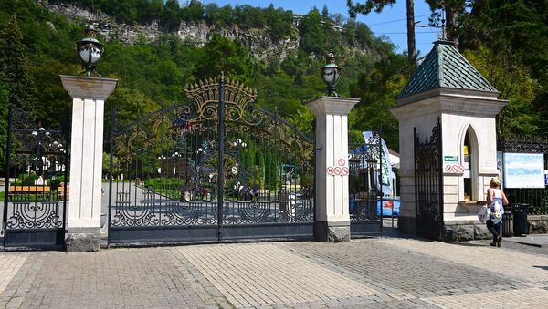 Центральный вход на территорию Боржомского парка - Sputnik Грузия
